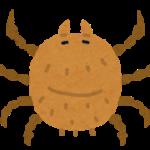 アレルギーの代表ヒョウヒダニの生態
