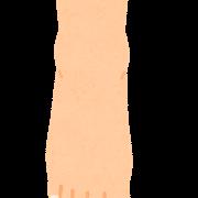足首の役割